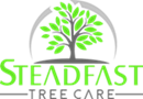 Steadfast Tree Care